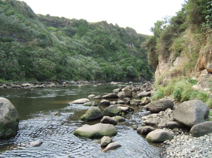 Waingongo River, North Island, NZ  Feb 2007 Bruce Spittle